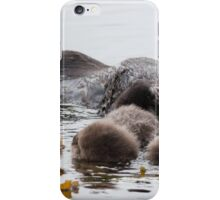 Awesome Sea Otter iPhone Case/Skin
