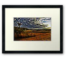Newport Conservation Park - Swamp Framed Print