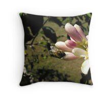 Sweet Flower of the Lemon Throw Pillow