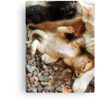 Uh Oh Baby Canvas Print