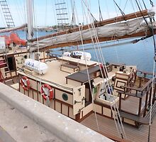 On Deck. The 'One and All'! Brigantine, Port Adelaide, S.Aust by Rita Blom