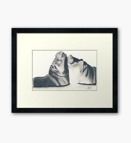 Hippo's Kiss Framed Print