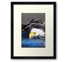 Bird Bath Framed Print