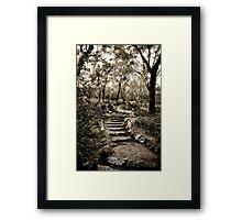 Just a few more steps ... Framed Print