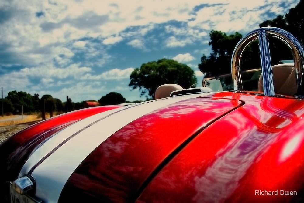 AC Cobra by Richard Owen