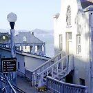 San Francisco Bay by Laura Dandaneau