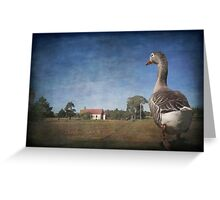 Off to Church said Toulouse the Goose Greeting Card