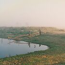 Misty Dam at Kerula © Albert by Vicki Ferrari