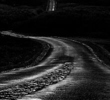 Long Winding Road  by dcdigital