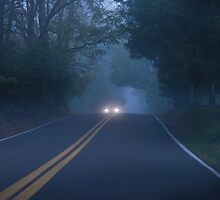 Foggy Morning Drive by David Lamb