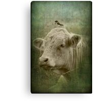 118 and his wee little mate Canvas Print