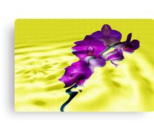 Reflections of Moth Orchid Canvas Print