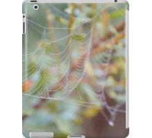 Fancy Web iPad Case/Skin