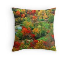 GRAVEYARD FIELDS,AUTUMN Throw Pillow
