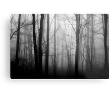 The Forest and the Fog 2 Metal Print