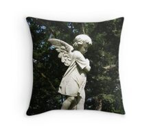 Touched By Sun  Throw Pillow