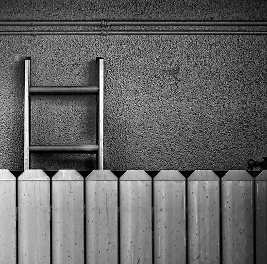 Fence and Ladder by jjtaylor