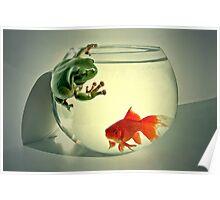 Goldie & Froggie Poster