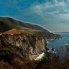 Big Sur by Ron LaFond