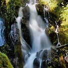 National Creek Falls by Stephen  Van Tuyl