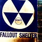 Fallout by colleen e scott