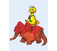 He-Bird and Battle Snuffy Photographic Print