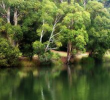The Quiet Waters By .... by Sharon House