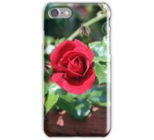 Our 2015 Red Roses Are Now Beginning to Show iPhone Case/Skin