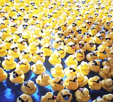 Life is  Rubber Ducky Race by HapaPhotography