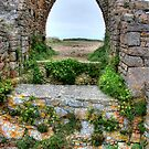 """""""Standing at the Gatehouse"""" by Bradley Shawn  Rabon"""