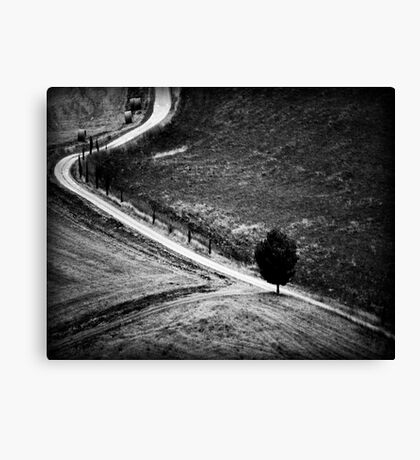 The Curve in the Road Canvas Print