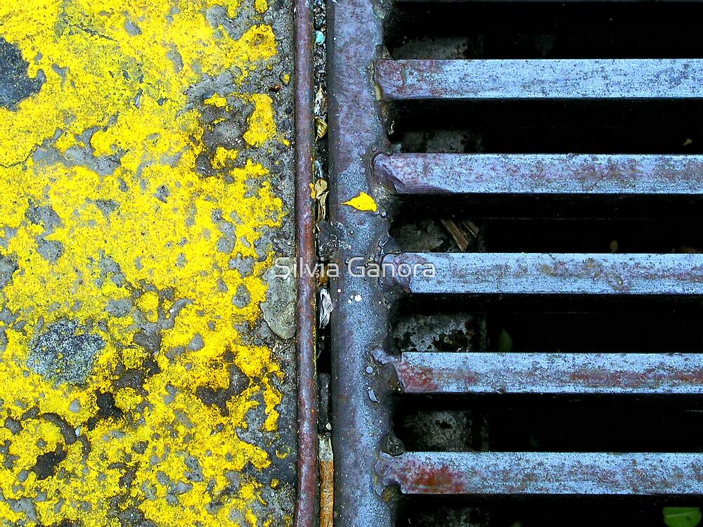 Yellow by Silvia Ganora