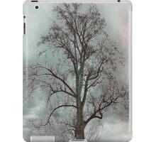 Bare Beauty of Winter iPad Case/Skin