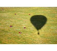 The Balloon and the Bulls Photographic Print