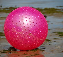 The Pink Ball by Mark Curry