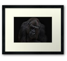 I'll never gonna be a silverback Framed Print