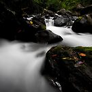 Flowing Tranquility II by Simon Mammino