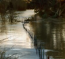 River Overflowing by Kristi Robertson