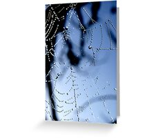 Cobweb Greeting Card