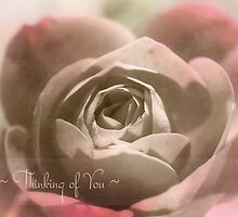 Thinking of You Rose by Robyn Gosby