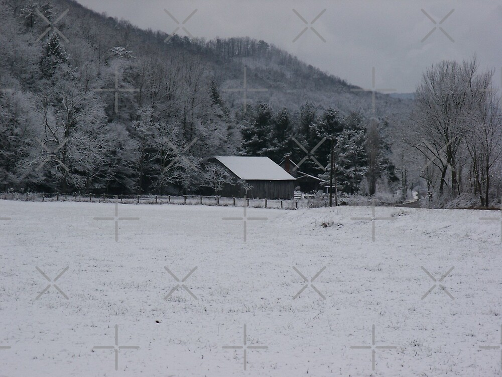 Winter in the Appalachian Mountains by Linda Costello Hinchey