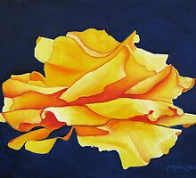 A Perfect Yellow Rose by max1cate