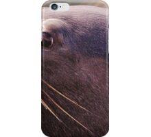Sammy Seal iPhone Case/Skin