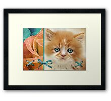 Raindrops on Roses and Whiskers on Kittens Framed Print