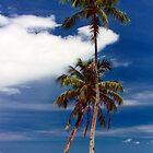 Two coconut trees by Hiroshi  Maeshiro