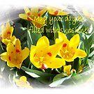 Sunshine Tulips  by Marie Sharp