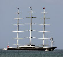 S\V Maltese Falcon  by Timothy Gass