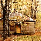 Woodland Cottage by NatureGreeting Cards ©ccwri