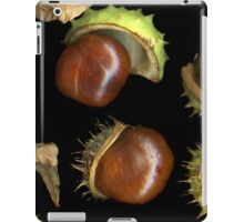 Chestnuts iPad Case/Skin