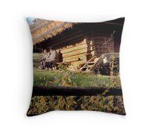 Shevechenko Museum Village Throw Pillow